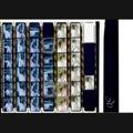 BALI2002_12